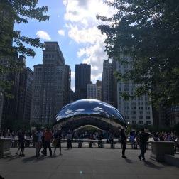 WTF Chicago 1
