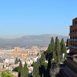 WTF Granada 3
